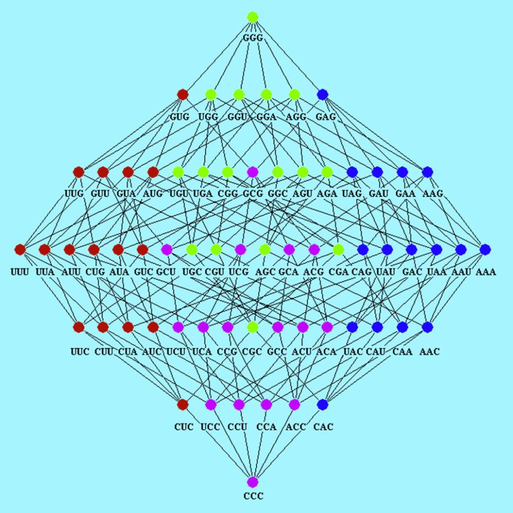 Genome Algebras Genomic Mathematics